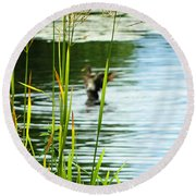An Out Of Focus Flap  Round Beach Towel