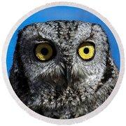 An Owl Round Beach Towel