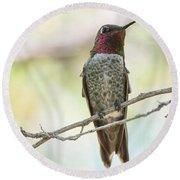 Ana Hummingbird Round Beach Towel
