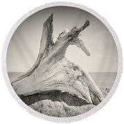 Analog Photography - Driftwood Round Beach Towel