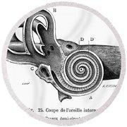 Anatomy: Middle Ear Round Beach Towel