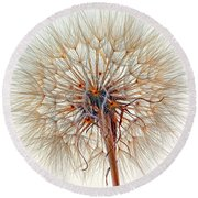 Anatomy Of A Weed High Key  Round Beach Towel