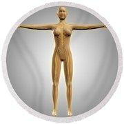 Anatomy Of Female Body With Nervous Round Beach Towel