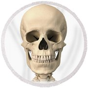 Anatomy Of Human Skull, Front View Round Beach Towel
