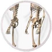 Anatomy Of Male Human Skeleton, Side Round Beach Towel