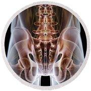 Anatomy Of The Hip Bones Round Beach Towel