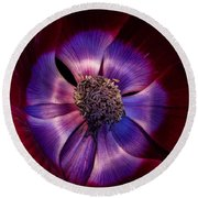 Anemone Round Beach Towel