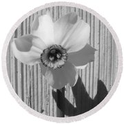 Angel Eyes Narcissus Round Beach Towel