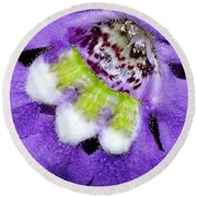 Angel Face Blue - With Extra Petals And 3 Stamen Round Beach Towel