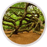 Angel Oak Tree Branches Round Beach Towel