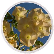 Angel Trumpets In The Sky Round Beach Towel