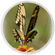 Angelic Butterfly  Round Beach Towel