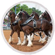Anheuser Busch Budweiser Clydesdale Horses In Harness Usa Rodeo Round Beach Towel