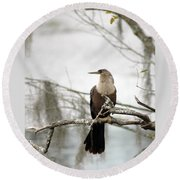 Anhinga On A Misty Morning Round Beach Towel