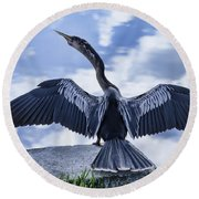 Anhinga Take Off Round Beach Towel