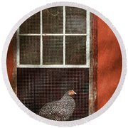 Animal - Bird - Chicken In A Window Round Beach Towel