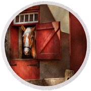 Animal - Horse - Calvins House  Round Beach Towel