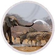 Animal Humour Round Beach Towel by Johan Swanepoel