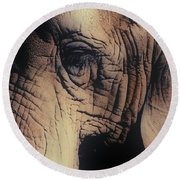 Animals Wrinkle Too Round Beach Towel