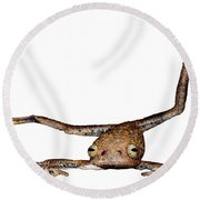 Annam Flying Frog Round Beach Towel by Roger Hall