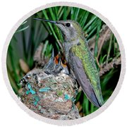 Annas Hummingbird With Young Round Beach Towel