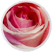 Anniversary Rose Round Beach Towel