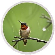 Another Rainy Day Hummingbird Round Beach Towel