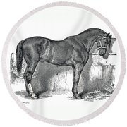 Antique Horse Drawing Round Beach Towel