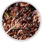 Ants Round Beach Towel