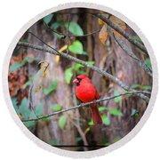 Appalachian Cardinal Round Beach Towel