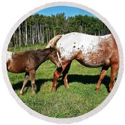 Appaloosa Mamma And Baby Round Beach Towel