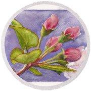 Apple Blossom Buds Round Beach Towel