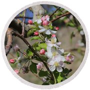 Apple Blossom Hill Round Beach Towel