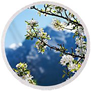 Apple Blossoms Frame The Rockies Round Beach Towel