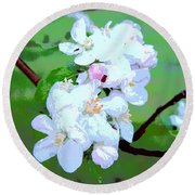 Apple Blossoms In The Spring - Painting Like Round Beach Towel