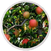 Apple Harvest - Digital Painting Round Beach Towel