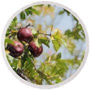 Apple Pickin' Time Round Beach Towel