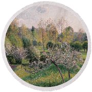 Apple Trees In Blossom Round Beach Towel