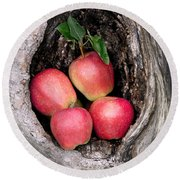 Apples In Tree Round Beach Towel