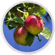 Apples On Tree Round Beach Towel