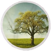 Appletree Round Beach Towel