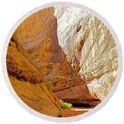 Approaching The Shadow In Grand Wash In Capitol Reef National Park-utah Round Beach Towel