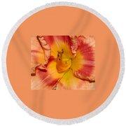 Apricot Daylily Close-up Round Beach Towel