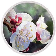 Apricot Flowers Round Beach Towel