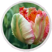 Apricot Parrot Tulip Round Beach Towel