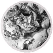 April Rose Bw Palm Springs Round Beach Towel