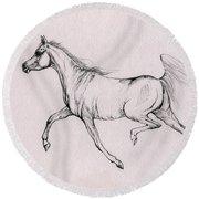 Arabian Horse  2014 02 25b Round Beach Towel
