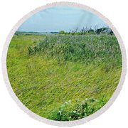 Aransas Nwr Coastal Grasses Round Beach Towel