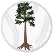 Archaeopteris Prehistoric Tree Round Beach Towel