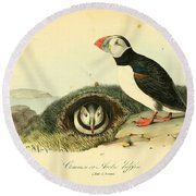Arctic Puffin Round Beach Towel by Philip Ralley
